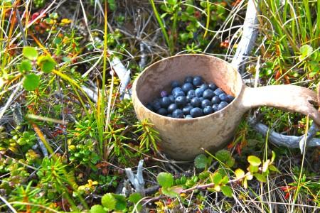 1kuksaberries