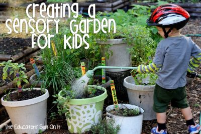 Creating a Sensory Garden For Kids