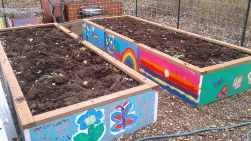 Beds Filled With Soil & Topped With Compost
