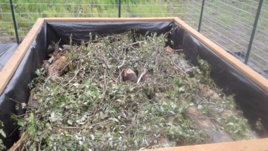 Pallet bed filled with logs, brush, grass, and leaves using the hugelkultur method before planting media used to complete fill.